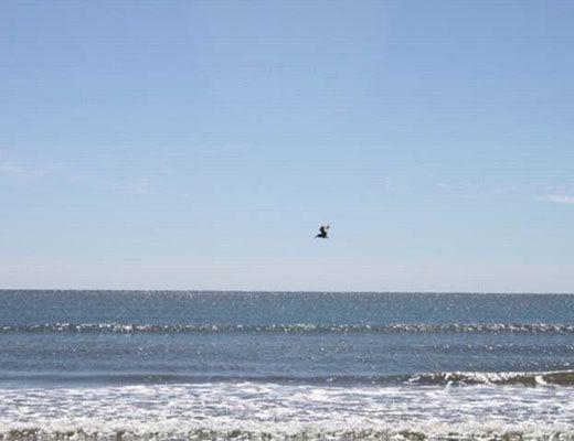 Windswept Woodlands 4467 - 1 Bdrm - Kiawah Island (10)