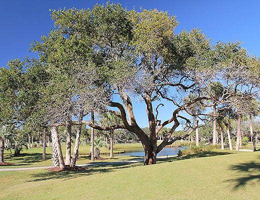 Atrium Villa 2917 - 2 Bdrm - Seabrook Island
