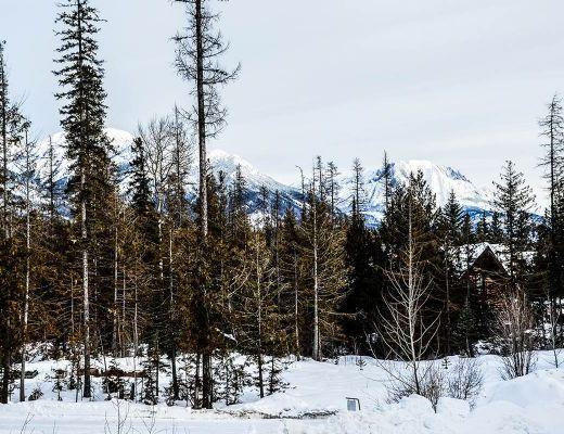 Polar Peak Lodges #11 - 3 Bdrm - Fernie (10)